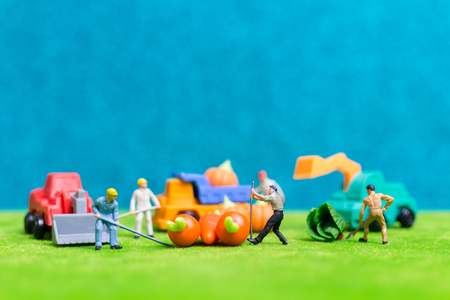 Miniature people : Farmers harvesting a vegetables , Agriculture concept