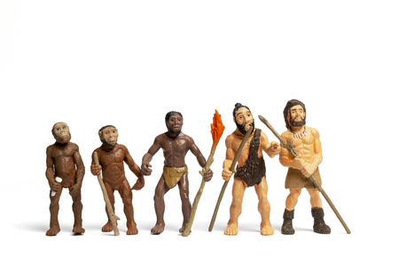 Human Evolution . Man Evolution Historical   Monkey, Neanderthal, Homo Sapiens, Primate With Weapon. Stock Photo