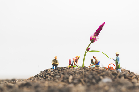 Miniature people , Gardeners take care growing plants  in The field , Environment concept
