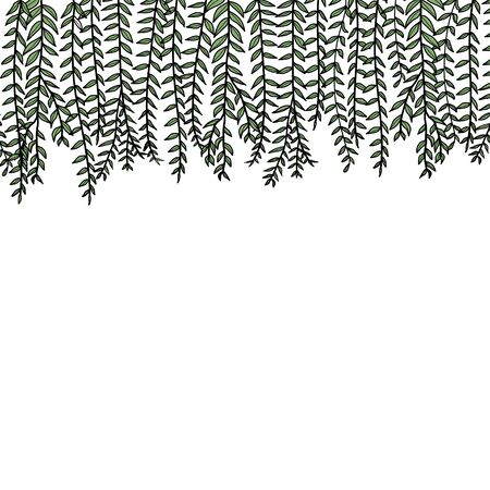 Vector card with hand drawn graceful fern leaves. beautiful floral design elements.