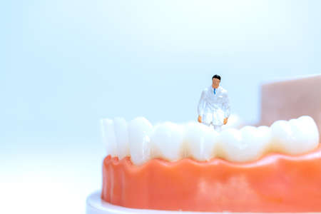 Miniature people : Dentist observing and discussing about human teeth with gums