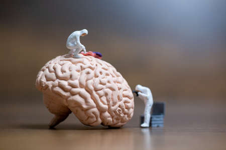 Miniature people , Scientist observing and discussing about human brain , Medical healthcare and surgical doctor service concept.
