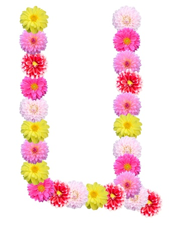 Font flower   Stock Photo - 19143338
