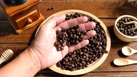 Hand Holding Coffee Bean, Coffee Bean in Hand, Ingredients Coffee, Top View