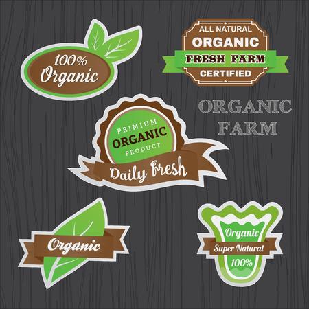 エンブレムの有機野菜ロゴ ステッカー デザインのセットです。バナー、ロゴ、バッジ、ラベル テンプレート グリーン、ブラウン色のトーン デザイ  イラスト・ベクター素材