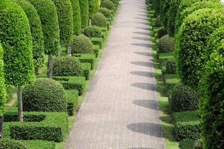 walking path: Garden with walking path Stock Photo