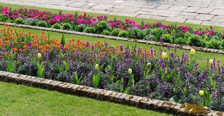 Flower Garden Stock Photo - 6892149