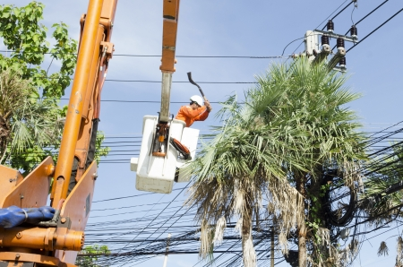Electrician worker in cherry picker solve palm leaf and protect a wire of the power line Editorial