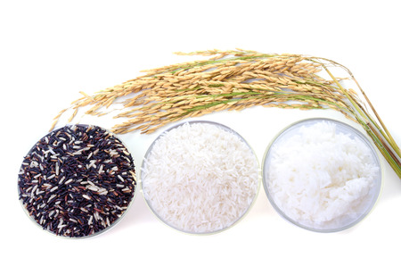 black rice: Raw rice, Selection Of black rice white rice and paddy rice