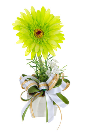 Green Flower in a vase on a white background. photo