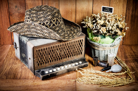 bandoneon: Still life fine art photography on concept bandoneon on wooden background