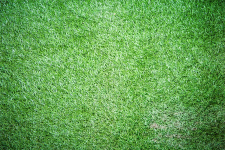 horizontal  green: Plastic green grass texture for background
