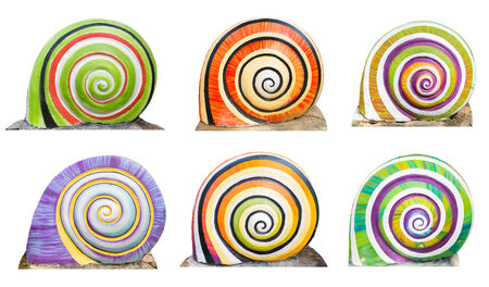 gastropod: Group of colorful cocnrete gastropod isolate on white background . Stock Photo
