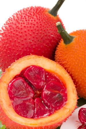 bitter fruit: Gac fruit, Baby Jackfruit, Spiny Bitter Gourd, Sweet Grourd or Cochinchin Gourd on white background
