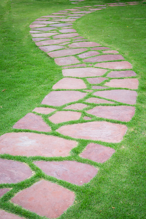 walk path: The Stone block walk path in the park with green grass background