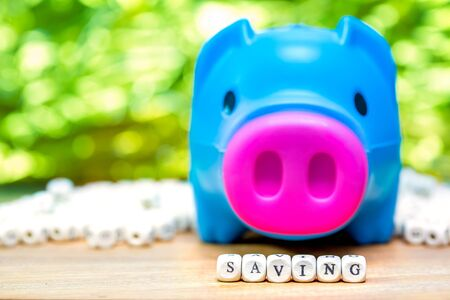 Blue piggy bank with Saving message on green background