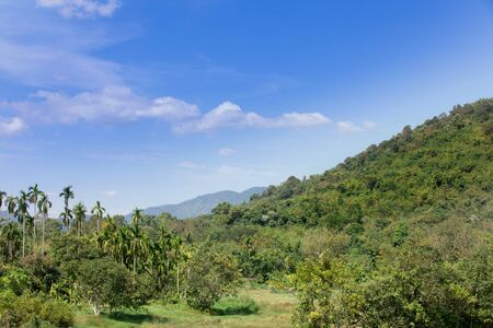 yai: Thai forest outback landscape. Forested hills and meadows, Khao Yai ,Nakhonnayok ,Thailand . Stock Photo