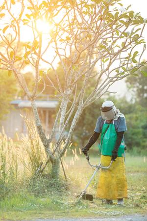garden landscaper man mowing cutting grass in his garden yard with lawn mower Stock Photo
