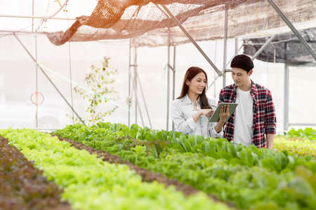 Smart farm and farm technology concept.Smart young asian farmer  using tablet to check quality and quantity of organic hydroponic vegetable garden at greenhouse .