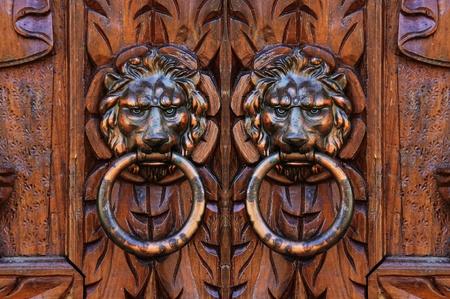 Lion Door Knocker photo