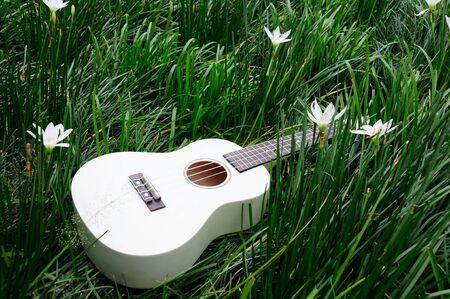 Guitar on grass photo