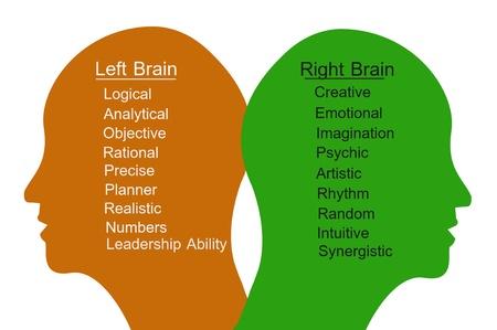 psiquico: Cerebro izquierdo y cerebro derecho Concept Foto de archivo
