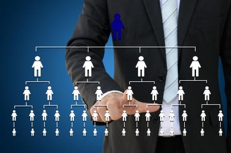 organization: Business hand touching organization chart Stock Photo