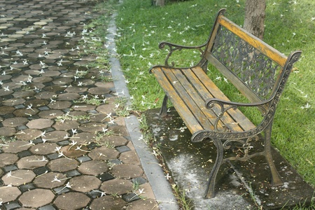 bench brown in the park and white flowers falling around the floor. photo