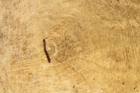 wood texture Stock Photo - 11676059