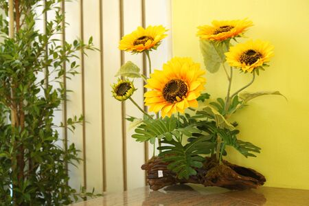 sunflower in room photo