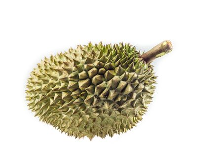 thorns  sharp: Durian is a fruit with sharp thorns  Stock Photo