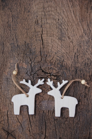 Two loving elks for christmas 写真素材