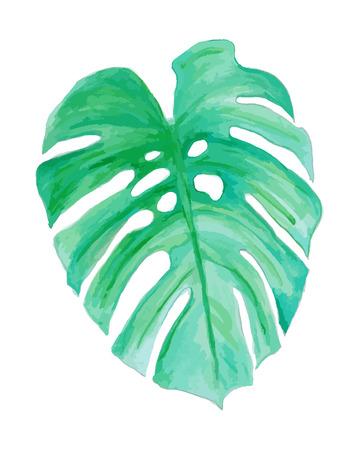 Waterverftekening, palmbomen en groene bladeren Stock Illustratie