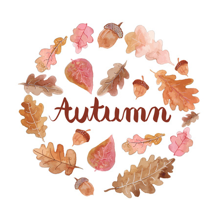 Beautiful background of autumn leaves. Autumn background. Autumn set.