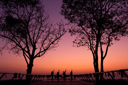 Silhouette of friend raising arm to posture during sunrise on vacation, tree as forground, travel with friends concept