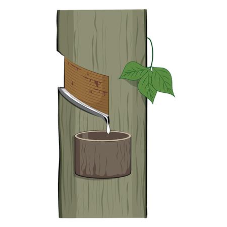 ゴムの木 (パラゴムの Brasiliensis)、自然と熱帯のゴム処理、ベクトル図から滴る天然ラテックス
