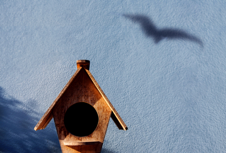 Freedom and Escape Concept. Shadow of Bird shading on the Cement Wall, Leaving from the Birdhouse to Nature Banque d'images - 110520628