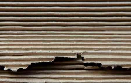 Corrugated Paper Texture Background. Closeup shot and selective focus
