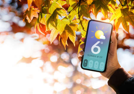 Good Weather on Sunny Day in Fall and Autumn Concept. Hand Raised up Mobile Phone to see Weather Forecast Information. Red, Yellow, Orange Foliages as background Standard-Bild