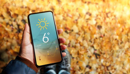 Good Weather on Sunny Day in Fall and Autumn Concept. Hand holding a Mobile Phone to see Weather Forecast Information. Yellow, Orange Foliages as background. Top View