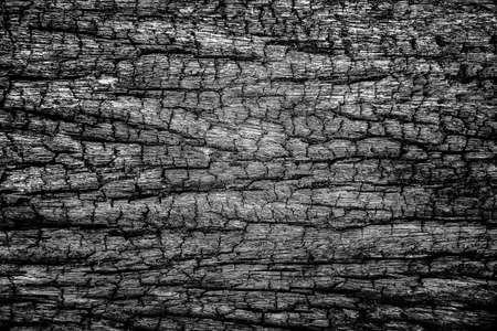 Closeup of Old and Grunge Wooden Texture Surface Background, Dark, Black and White