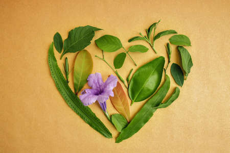 Environmental and Health Care Concept. Green Leaf in Shape of Heart. Green Energy, Renewable and Sustainable Resources