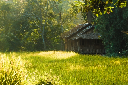 old style hut in rice field, Chiangmai, Thailand Stock Photo