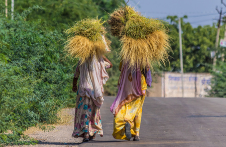 Rajasthan, India - between New Delhi and Pakistan, a desertic region inhabited by colorful and smiling people, and a place where the foreigners are always welcome