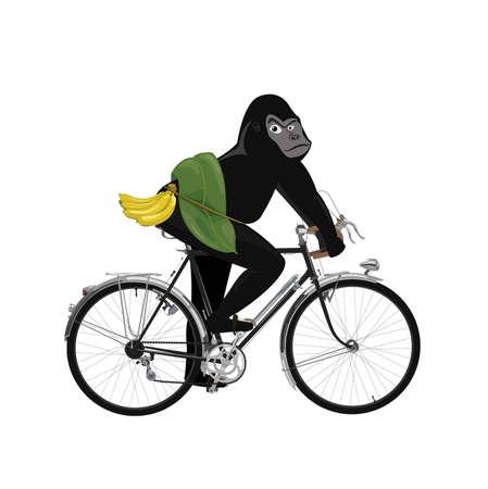 wild gorilla ride a bicycle  Illustration