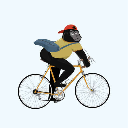 hipster teenage gorilla ride a bicycle