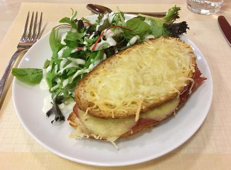 panino fresco con formaggio e insalata Archivio Fotografico