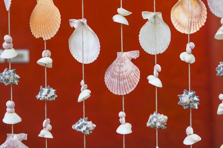 Seashell pattern curtain and red wall photo
