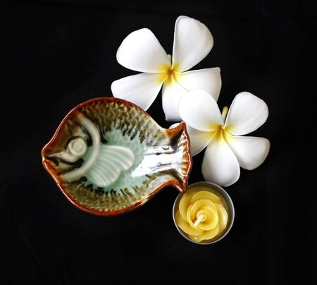 plumeria flower: The green candle holder with fish shape and rose flower candle with the plumeria flower at the background