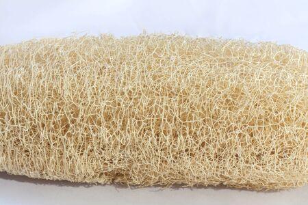luffa: Natural fiber from Luffa Cylindrica Stock Photo